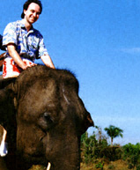A ride on an elephant in Thailand - very exciting